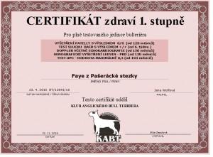 certifikát fay